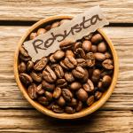 сорт кофе Робуста