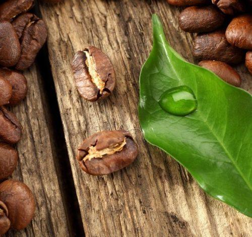 Сорта и рецепты приготовления вкусного кофе